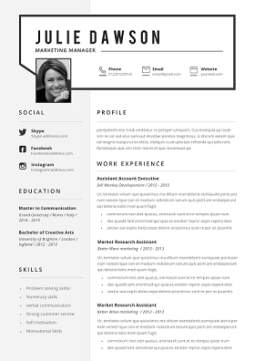 Professional Resume Templates Library Templicate